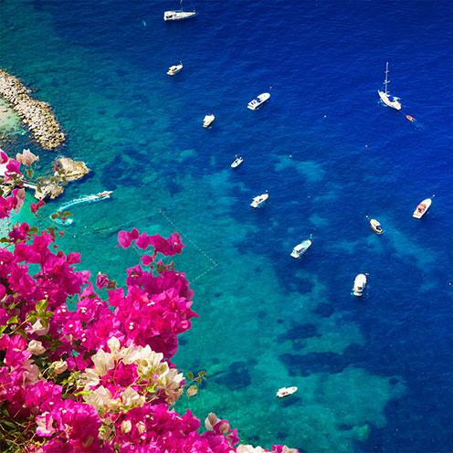 Capri Artboard Four