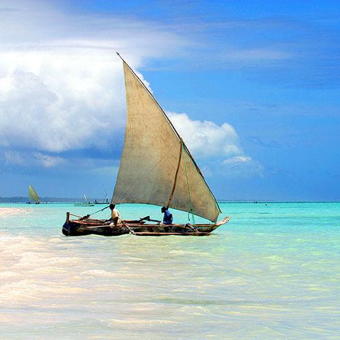 Zanzibar Eight
